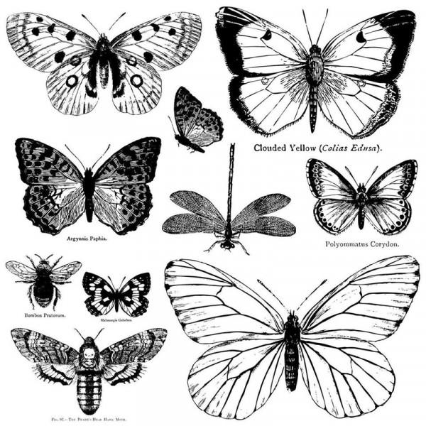 """Decor Stempel """"Butterflies"""""""